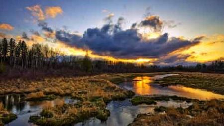 Изящные фото всяческой вечерней природы