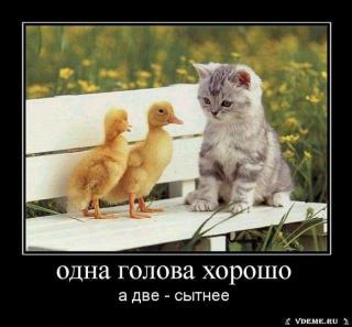 http://i63.fastpic.ru/big/2015/0109/fc/e0c81f52c2b8278caffb6167286997fc.jpg