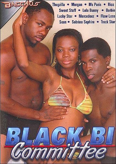 Black Bi Committee (2012/DVDRip)