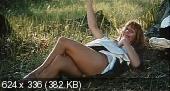 Похотливый викарий / Kyrkoherden (1970) DVDRip