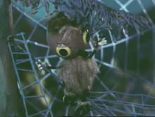 Про паучка, с которым никто не дружил (1975) DVDRip