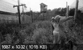 http://i63.fastpic.ru/thumb/2014/0623/95/1bd94657693b0929c8f34b44a6512d95.jpeg