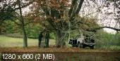 ������ � ��� / Cesta do lesa (2012) HDTVRip 720p | VO