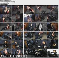 Studio EVS (2011/DVDRip)