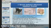 Методики излечения от грибковых, кожных заболеваний (2014) Вебинар