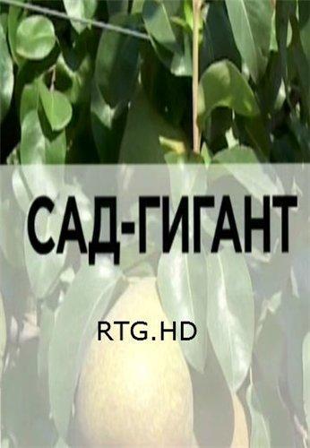 Сад-гигант [RTG HD] (2013) HDTVRip