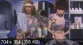 Рабочий и парикмахерша / Metalmeccanico e parrucchiera in un turbine di sesso e di politica (1996) DVDRip