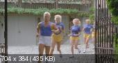Шесть шведок в пансионате / Sechs Schwedinnen im Pensionat (1979) DVDRip
