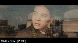 Железная хватка (2010) BDRemux 1080p | D, A