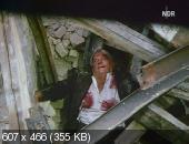 ��������� ������� � ����� / Gruppenbild mit Dame (1977) TVRip | VO