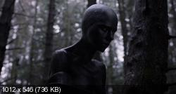 Побудь в моей шкуре (2013) BDRip-AVC от HELLYWOOD {Лицензия}