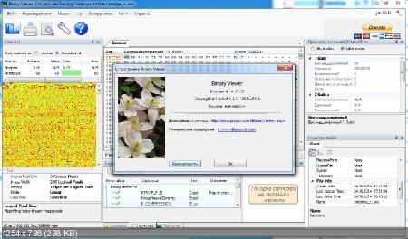 Binary Viewer 4.14.10.25 (Русификатор)