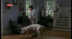 Доктор Голливуд (1991) HDTVRip от MediaClub {Android}