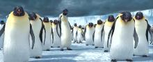 Делай ноги / Happy Feet (2006) BDRip