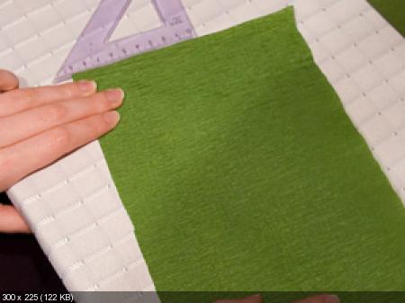 Цветы из гофрированой бумаги E18f2732741db6ac52e1327bee9f9021