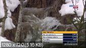 Лыжные гонки. Кубок Мира 2014-15. Tour De Ski. Оберстдорф (Германия). Мужчины. Гонка преследования 15 км. Кл [04.01] (2015) HDTVRip 720р