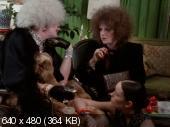 ����� ���� / Women in Revolt (1971) DVDRip | AVO