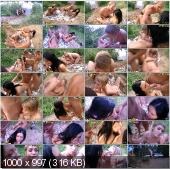 CollegeFuckParties - Lola, Raffaella, Dulsineya, Liana, Vlaska, Jewel - Picnic Fuck Party Movie Part 7 [HD 720p]