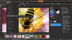 Corel PaintShop Pro X7 17.1.0.72 SP1 Retail + Content (ML/RUS)