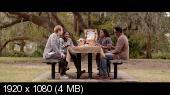 13 грехов / 13 Sins (2014) BDRemux 1080p | DUB | Чистый звук
