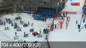Биатлон. Кубок Мира 2014-15. 5-й этап. Рупольдинг (Германия). Мужчины. Спринт 10 км [17.01] (2015) HDTVRip
