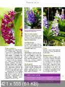 Комнатные и садовые растения от А до Я (№50 / 2015)