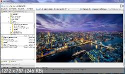 WildBit Viewer 6.2 Alpha 4 Portable RUS