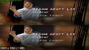 Секреты Шаолиня в 3Д / Secrets of Shaolin with Jason Scott Lee / Shaolin Bootcamp 3D ( by Ash61) Вертикальная анаморфная
