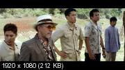 Честь дракона 2 (2013) Blu-Ray Remux (1080p)