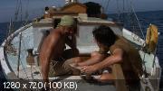 Преследование по пятам (1987) WEB-DL (720p)
